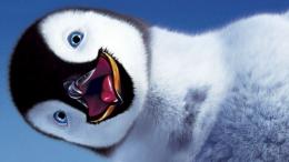 Un penguin heureux